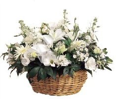 Bodrum çiçek Siparişi Muğla çiçekçi Bodrumçiçek Gönder Bodrum
