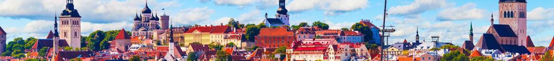 Estonya çiçek siparişi - Estonya çiçekçiler - Yurtdışına çiçek - Yurtdışı çiçek siparişi