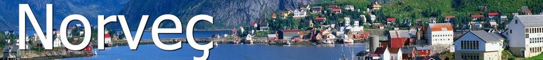Norveç çiçek siparişi / Norveç çiçek gönder / çiçekçi / çiçek Norveç / Flora Çiçek Türkiye
