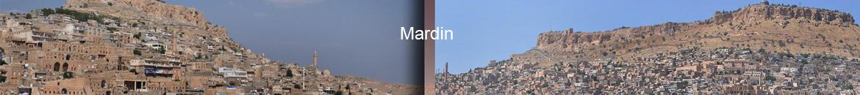 Mardin Organize Sanayi Bölgesi Çiçek Siparişi